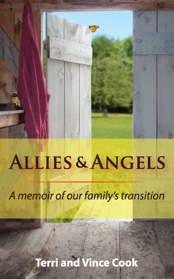 Allies & Angels Cover